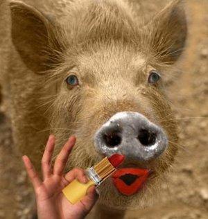 pig-lipstick